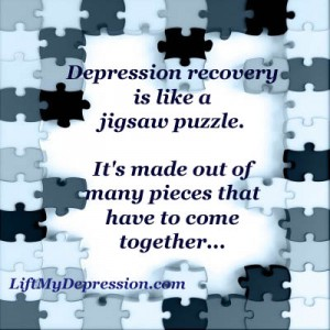 recovery puzzle