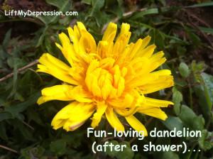 Dandelion-fun